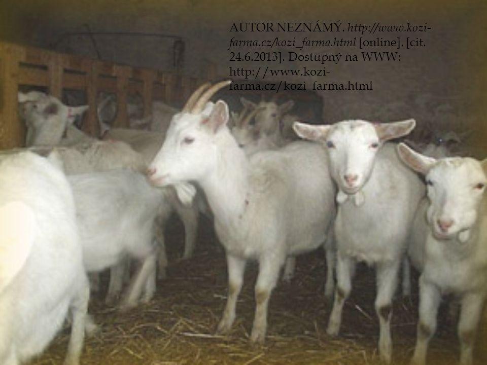 AUTOR NEZNÁMÝ. http://www. kozi-farma. cz/kozi_farma. html [online]